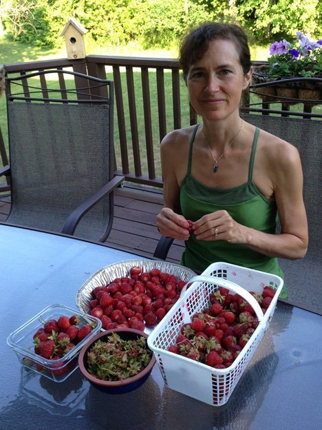 Selecting the best berries to keep to eat and freezing the more ripened ones